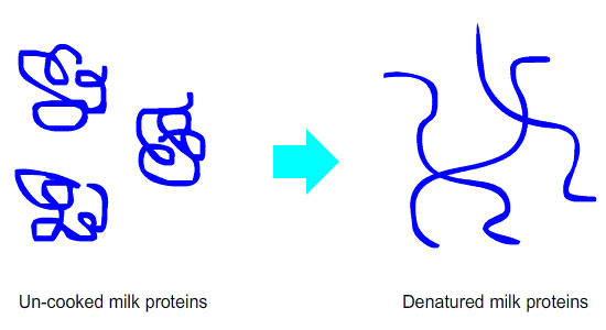 Milk protein denaturation