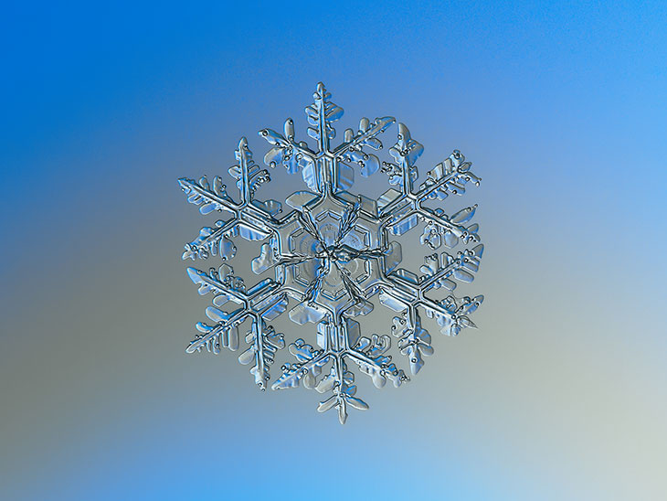An ice crystal